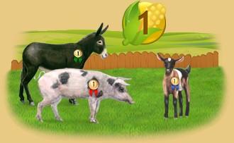 Farmer rankings by presence days